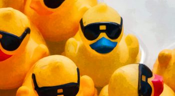 rubber-ducks